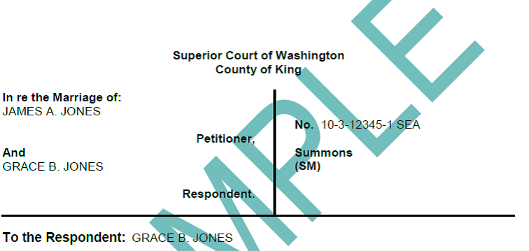 King county divorce process caption screenshot solutioingenieria Image collections